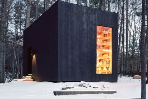 This Secluded Library In The Woods Is Every Book Lovers Dream